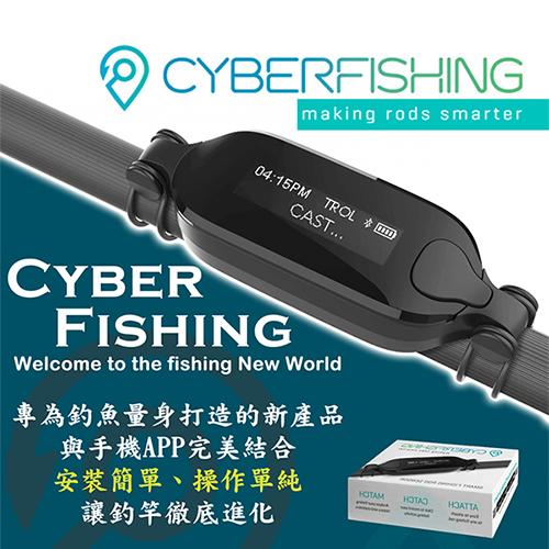 CYBERFISHING